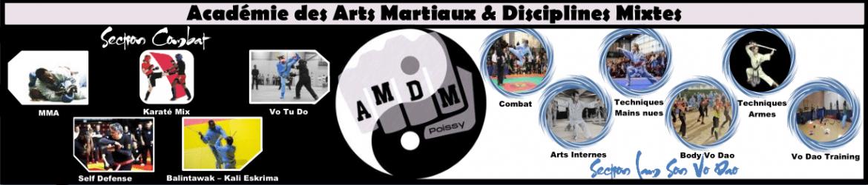 cropped-Bannière-site-web-AMDM-V6e.png