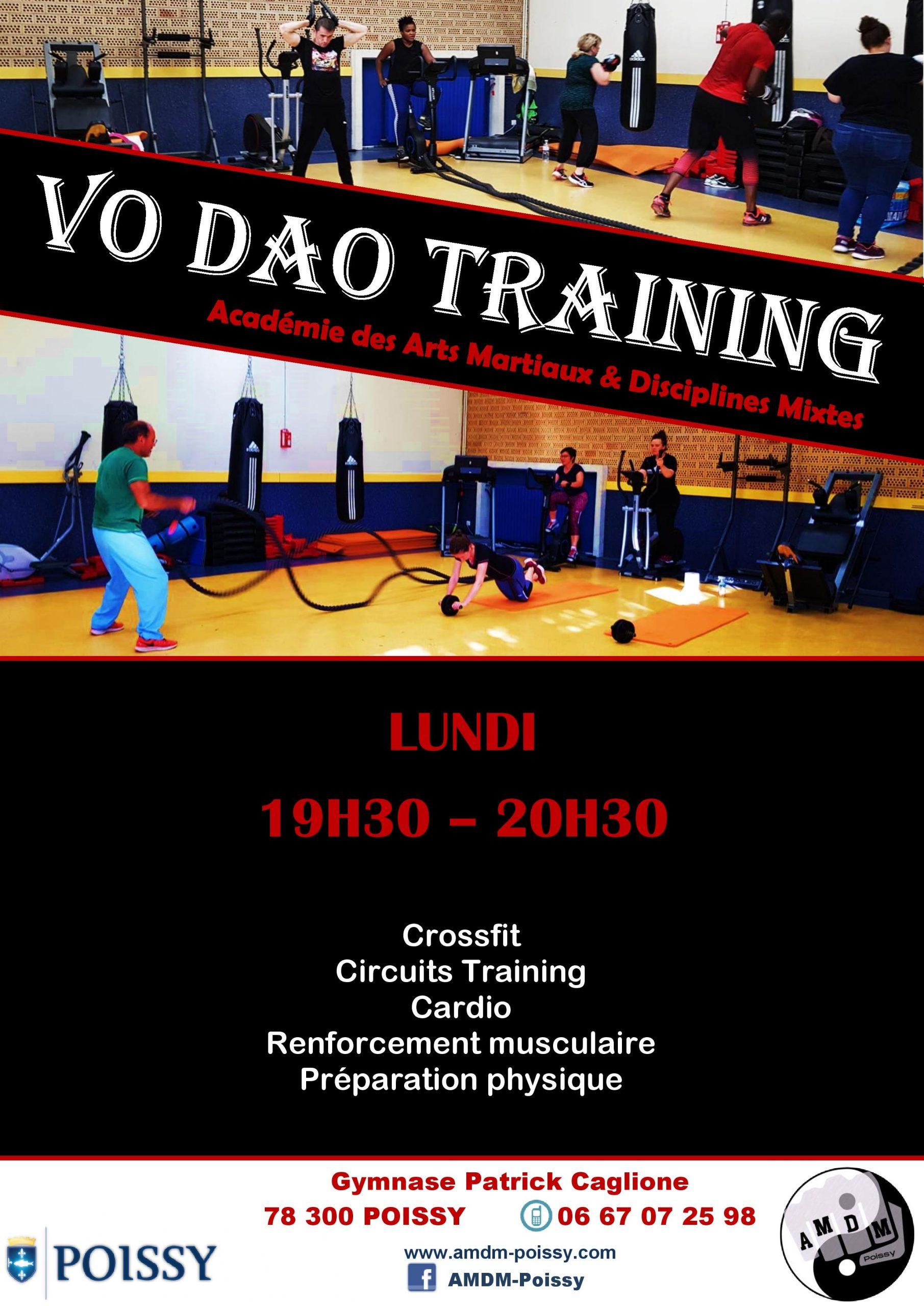 Affiche Vo Dao Training